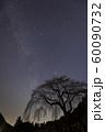 天の川と桜の木のシルエット 60090732