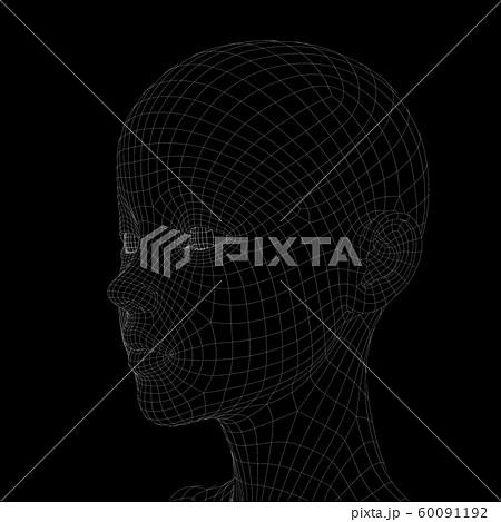 ワイヤーフレーム 女性 頭部 perming3DCG イラスト素材 60091192