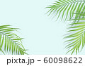 Tropical palm leaves on light blue background. 60098622