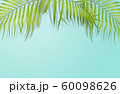Tropical palm leaves on light blue background. 60098626