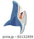 サメのイラスト 上向き 60132899