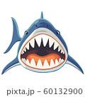 サメの正面イラスト  60132900