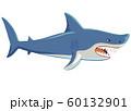サメの全身イラスト 横 60132901