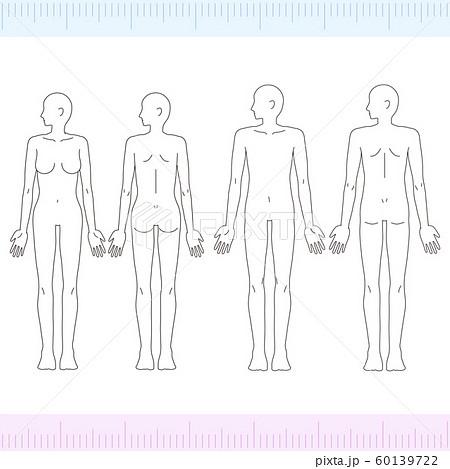 横顔の男性・女性 メディカル 美容 裸 ヌード 全身 正面・背面 60139722