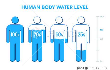 人体と水分レベルの図 60179825