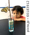 Asian boy looks at butterfly that leave the pupa. 60183912