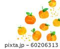 蜜柑 オレンジ 柑橘類 コラージュ 60206313