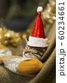 子猫 クリスマス 60234661