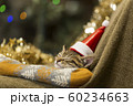 子猫 クリスマス 60234663