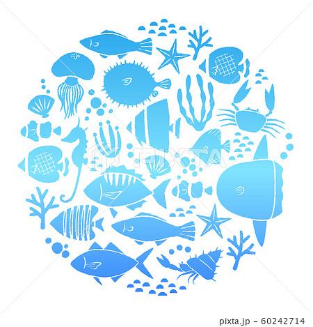 魚フレーム 60242714