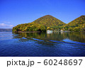 洞爺湖 中島 紅葉(遊覧船からの眺め) 60248697