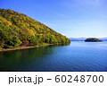洞爺湖 中島 紅葉(遊覧船からの眺め) 60248700