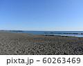 秋の湘南ひらつかビーチパーク  60263469