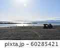 秋の湘南ひらつかビーチパーク 海岸清掃 60285421