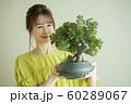 盆栽と女性 60289067