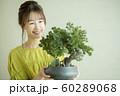 盆栽と女性 60289068