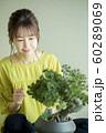 盆栽と女性 60289069