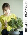 盆栽と女性 60289070