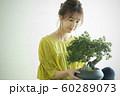 盆栽と女性 60289073