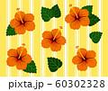 ハイビスカス オレンジ&黄色 ベクター ボーダー 60302328