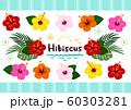 ハイビスカス 南国植物セット カラフル ベクター 60303281