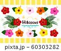 ハイビスカス 南国植物セット カラフル ベクター 60303282