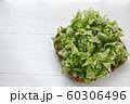ふきのとう 60306496
