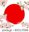 ソメイヨシノ 60317096