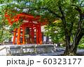 三十三間堂 京都 60323177