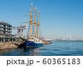 横浜新港埠頭と帆船みらいえ 60365183