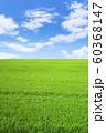 草原と青空 60368147