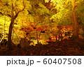 秋の栗林公園 60407508