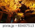 秋の栗林公園 60407513