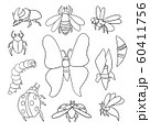 A set of different insects. Vector outlines for coloring 60411756