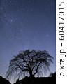 天の川と桜の木のシルエット 60417015