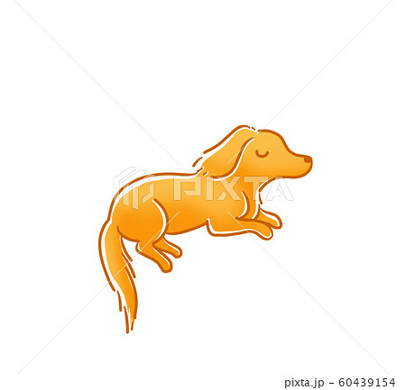 で 犬 寝る 横向き 犬が仰向けで寝る?犬の寝相を徹底解説【愛犬の心理や気持ちがわかる】