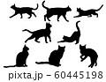 動物シルエットペットネコ 60445198