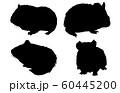 動物シルエットペットモルモット 60445200