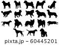 動物シルエットペットイヌ 60445201