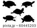 動物シルエットペットカメ 60445203