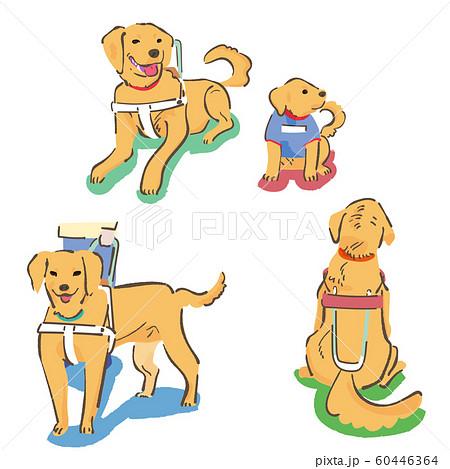 ラブラドールレドリバー 盲導犬 セット イラスト 60446364