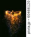 羽ばたく抽象的な火の鳥 60466120