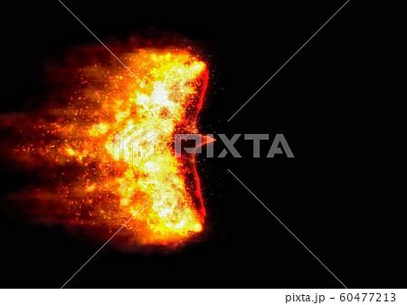 抽象的な火の鳥 60477213