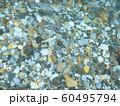 水の流れ 神崎川 長良川水系 岐阜県 日本 60495794