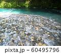 水の流れ 神崎川 長良川水系 岐阜県 日本 60495796