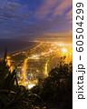 ニュージーランド タウンランガ マウント・マウンガヌイ マウアオの丘 山頂からの夜景 60504299