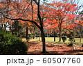 千秋公園の紅葉 60507760