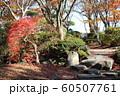 千秋公園の紅葉 60507761
