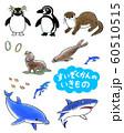 水族館の生き物達 60510515