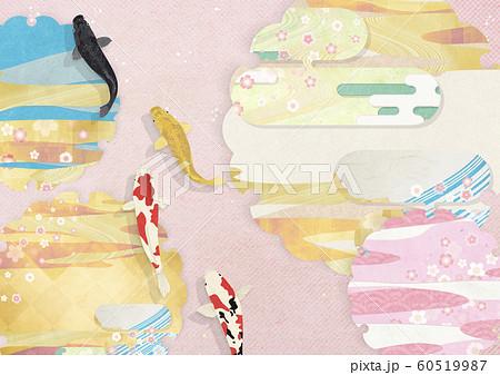 春爛漫-雪輪-さくら-錦鯉 60519987